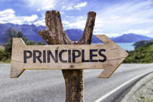12 Step Principles